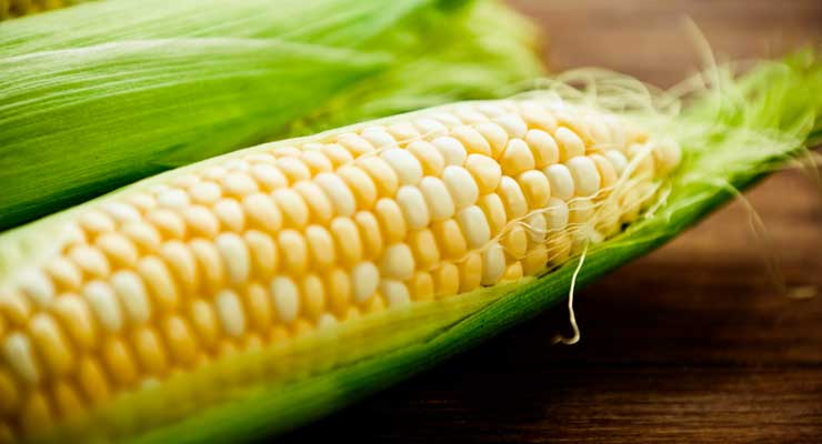 Meals That Pair With Corn on the Cob